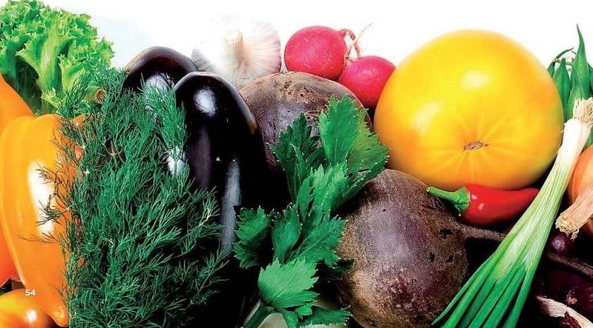 Alimentos que ajudam a pensar.2