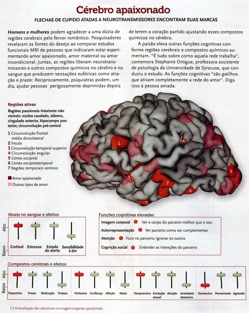 Cérebro apaixonado