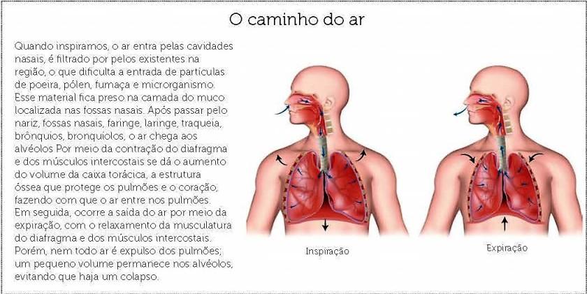Como a respiração afeta os sentimentos3