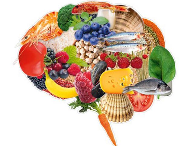 Alimenta para o cérebro