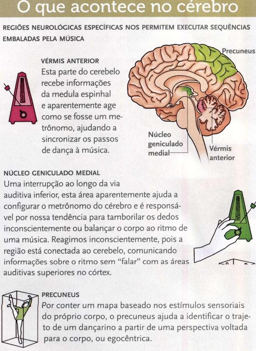 Coreografias cerebrais.3