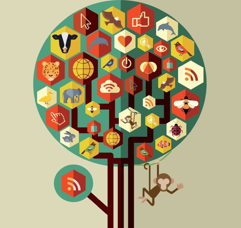 A rede social dos bichos