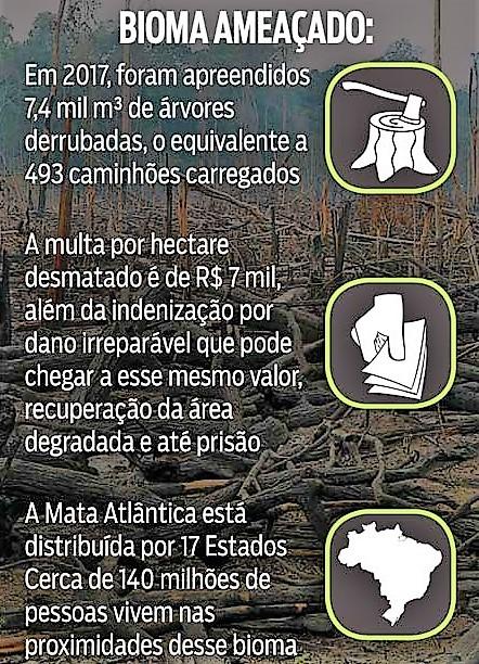 O avanço do desmatamento.2