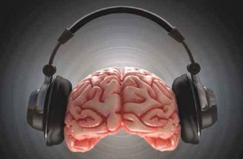 funcionamento cerebral.jpg