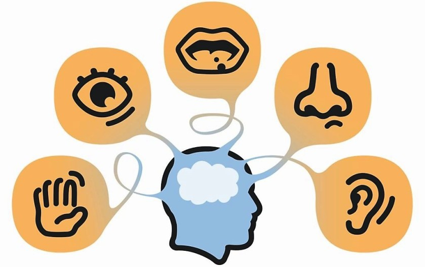 Trunfos do marketing sensorial