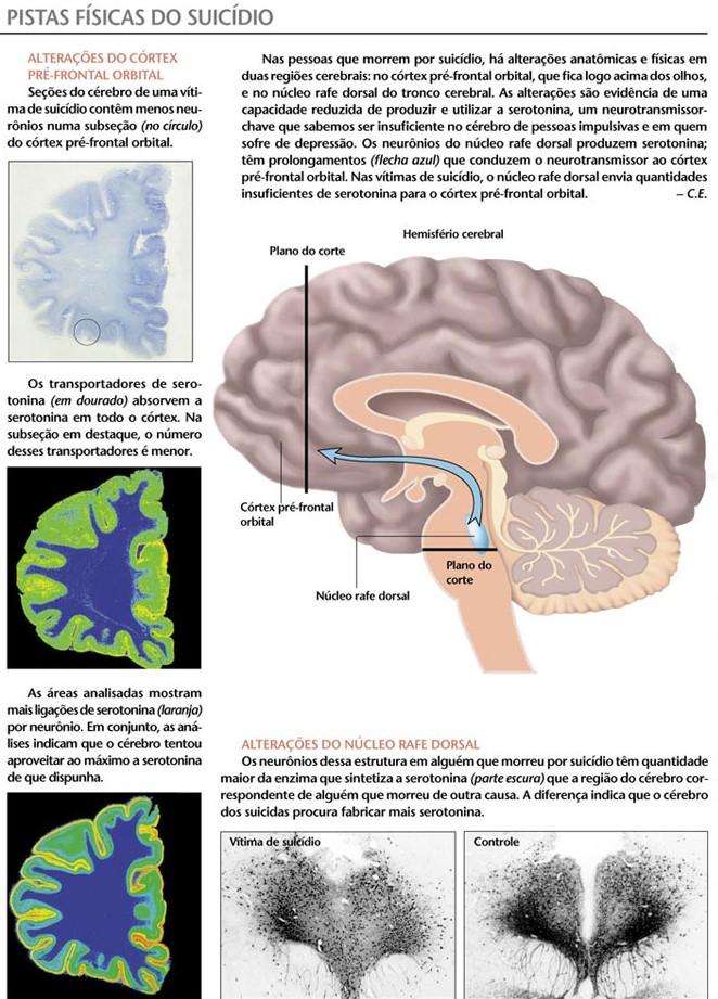 A neurociÇencia do suicídio. 2