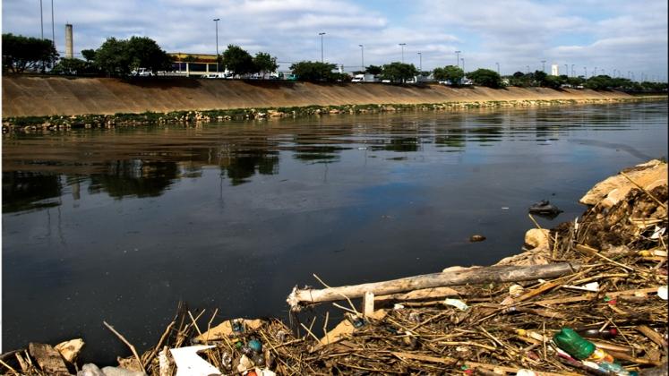 """Contaminação """"mata"""" rios da Mata Atlântica"""