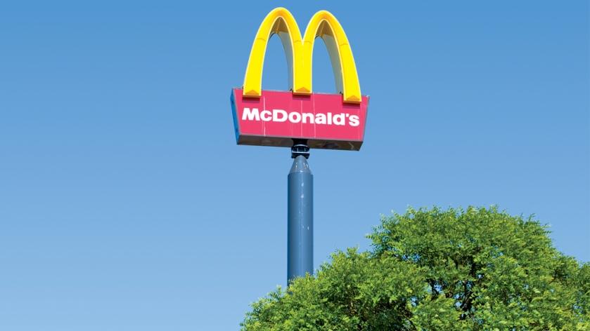 O desenvolvimento sustntável do fast food