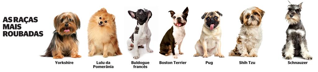 Mundo cão. 3