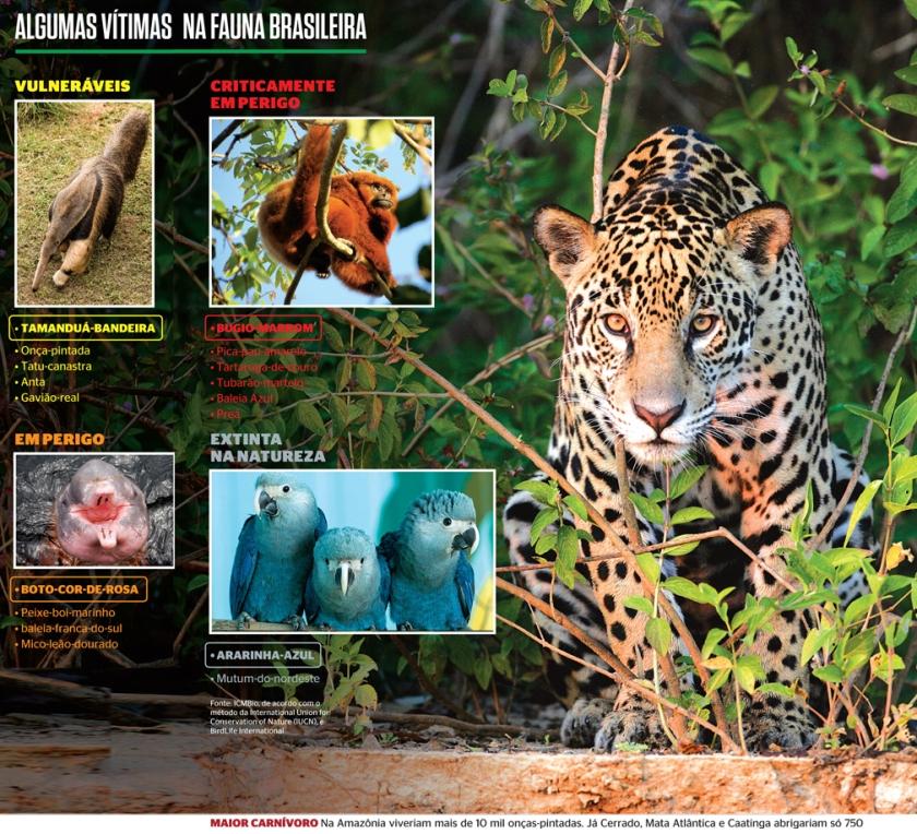Desejo animal de extinção. 2